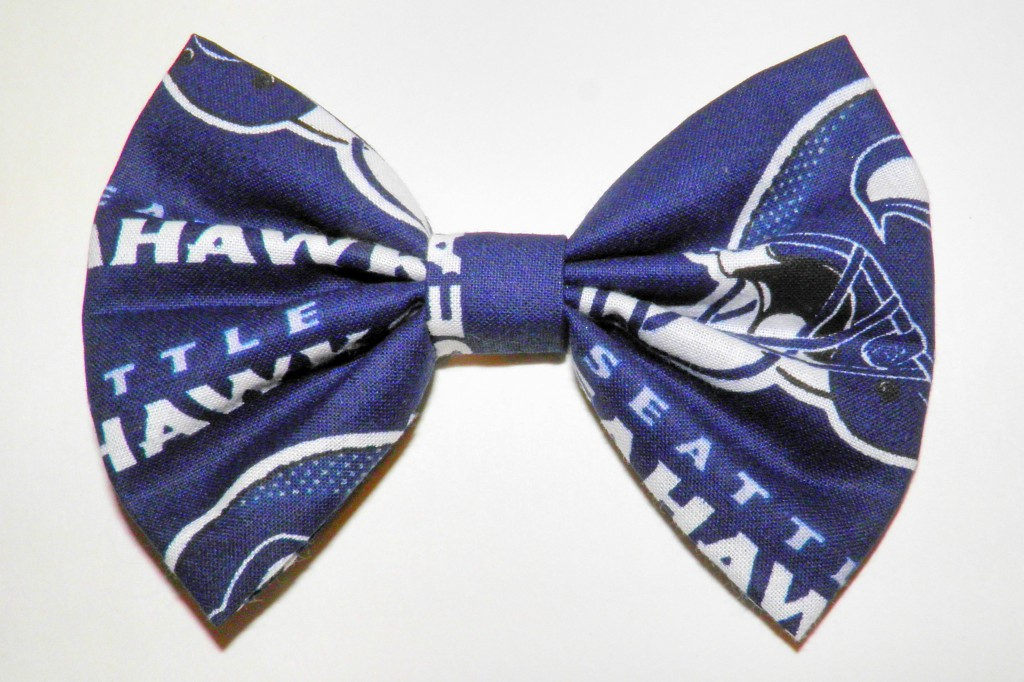 Paulette remembered that I'm from Seattle and sent me this amazing Seahawks bow! So sweet!
